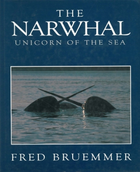The Narwhal - Unicorn of the Sea