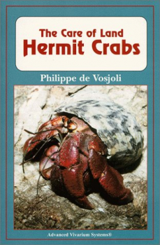 The Care of Land: Hermit Crabs